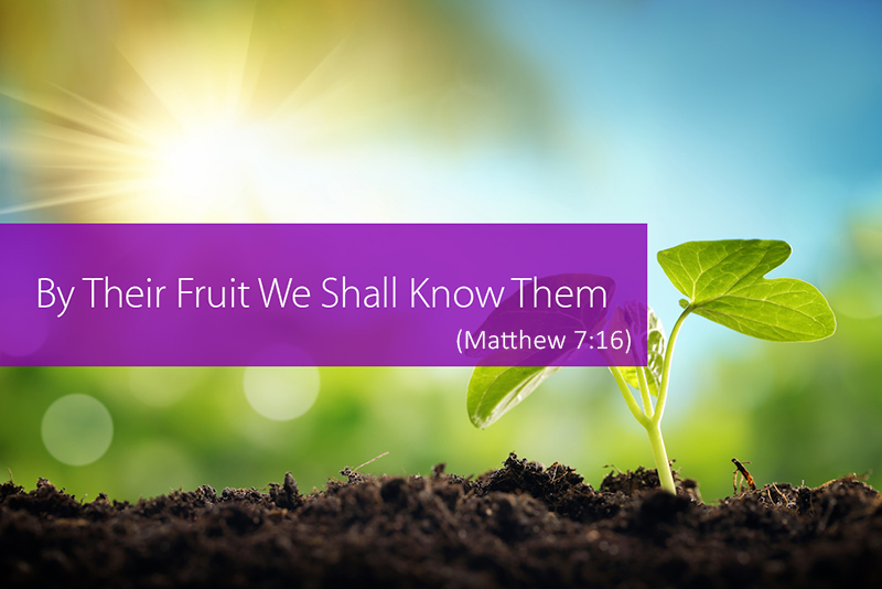 by-their-fruit-we-shall-know-them-matthew-7-16