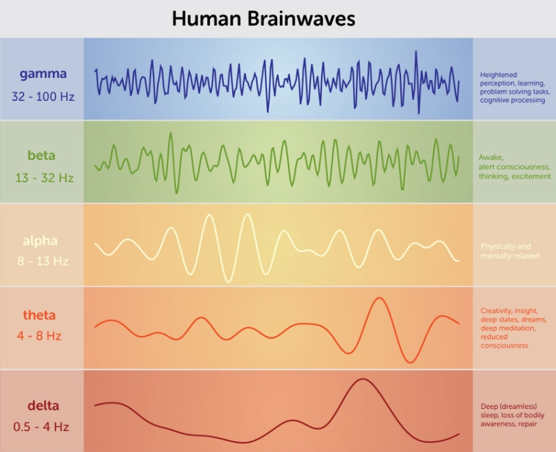 human-brain-waves-chart
